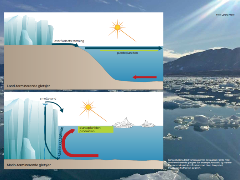 land og marin termineret gletsjer